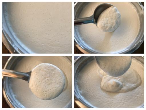 fermented dosa batter