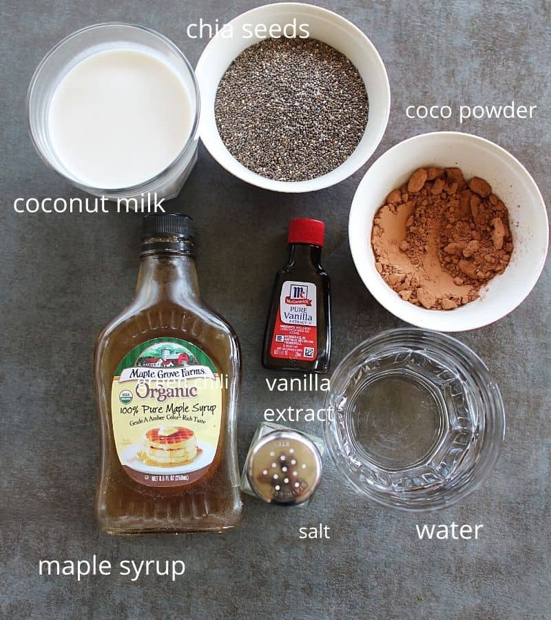 ingredients needed to make chocolate chia pudding