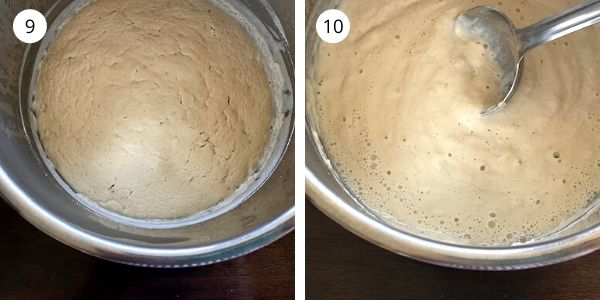 well fermented brown rice flour dosa batter in instant pot